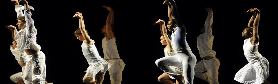 moss+ross client American Dance Festival